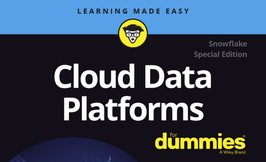 Cloud Data Platforms for dummies